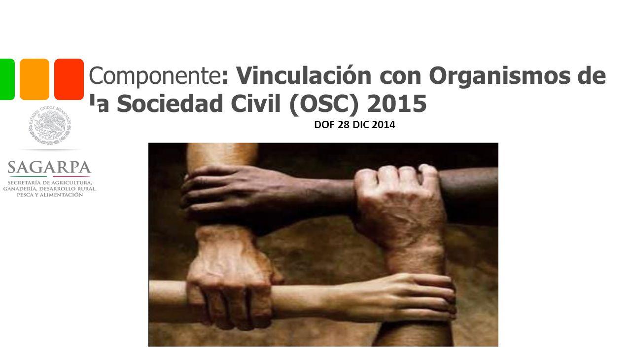 Componente: Vinculación con Organismos de la Sociedad Civil (OSC) 2015 DOF 28 DIC 2014