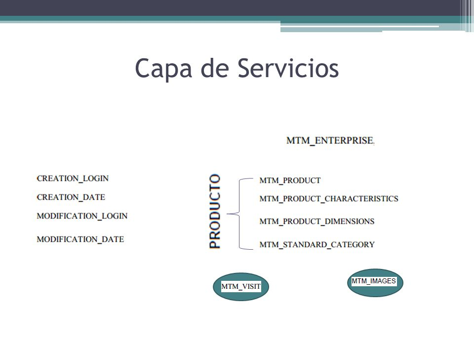 Capa de Servicios