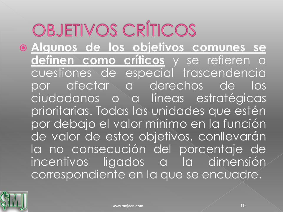  Algunos de los objetivos comunes se definen como críticos y se refieren a cuestiones de especial trascendencia por afectar a derechos de los ciudadanos o a líneas estratégicas prioritarias.