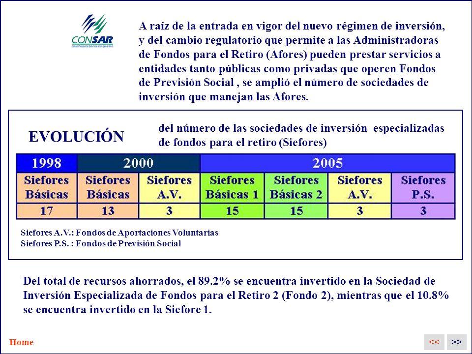 EVOLUCIÓN <<>> del número de las sociedades de inversión especializadas de fondos para el retiro (Siefores) Siefores A.V.: Fondos de Aportaciones Voluntarias Siefores P.S.