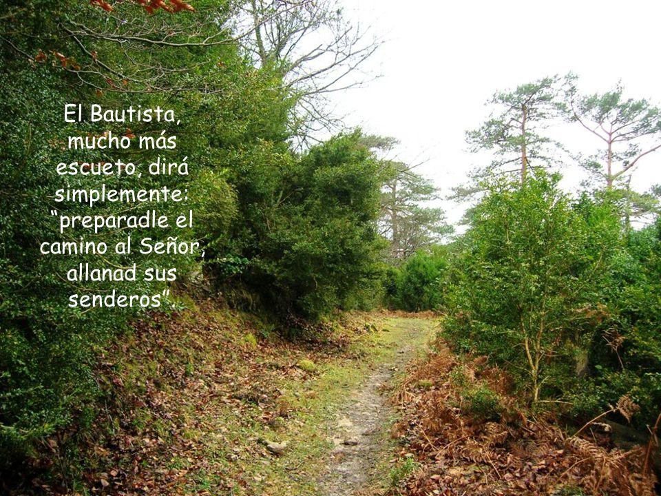 preparadle un camino al Señor, allanad la estepa, alzad los valles, abajad las colinas, enderezad lo torcido, igualad lo escabroso...