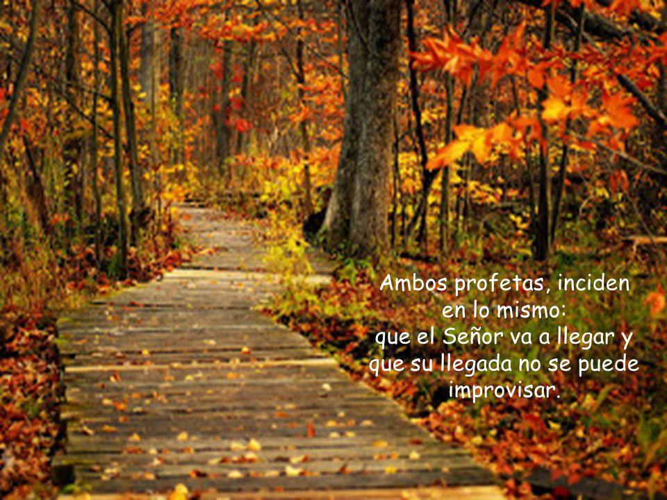 El Bautista, mucho más escueto, dirá simplemente: preparadle el camino al Señor, allanad sus senderos .