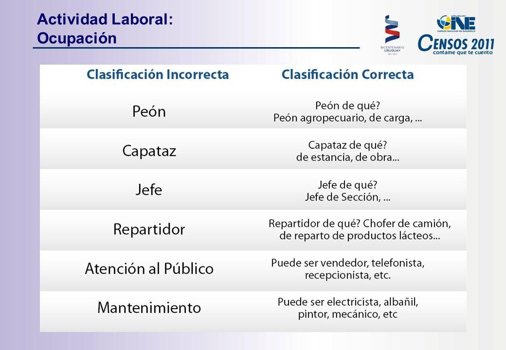 Actividad Laboral: Ocupación
