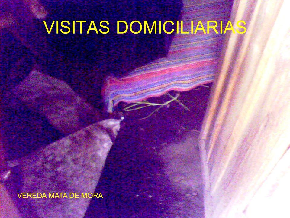 VISITAS DOMICILIARIAS VEREDA MATA DE MORA