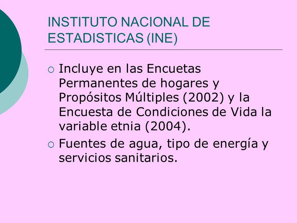 INSTITUTO NACIONAL DE ESTADISTICAS (INE)  Incluye en las Encuetas Permanentes de hogares y Propósitos Múltiples (2002) y la Encuesta de Condiciones de Vida la variable etnia (2004).