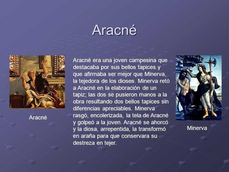 Aracné Aracné era una joven campesina que destacaba por sus bellos tapices y que afirmaba ser mejor que Minerva, la tejedora de los dioses.