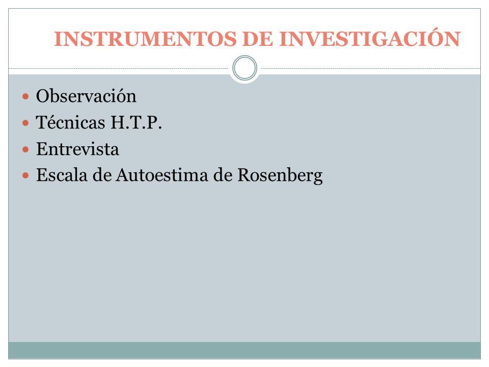 INSTRUMENTOS DE INVESTIGACIÓN Observación Técnicas H.T.P.