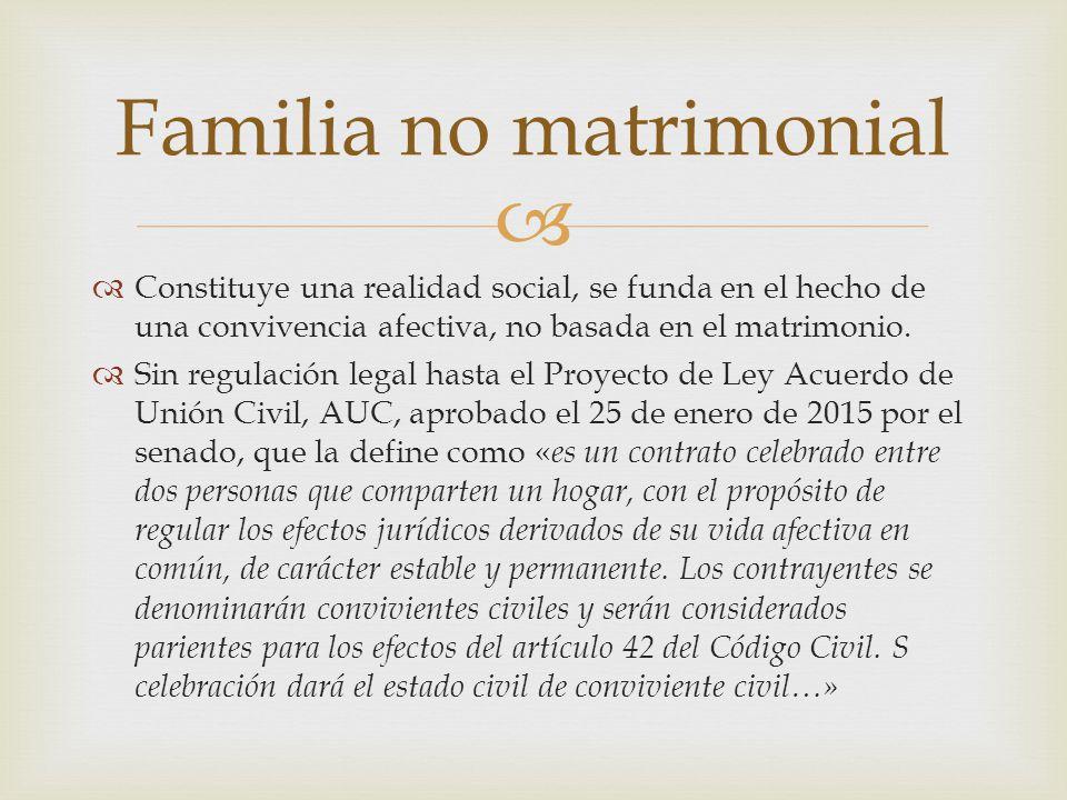   Constituye una realidad social, se funda en el hecho de una convivencia afectiva, no basada en el matrimonio.