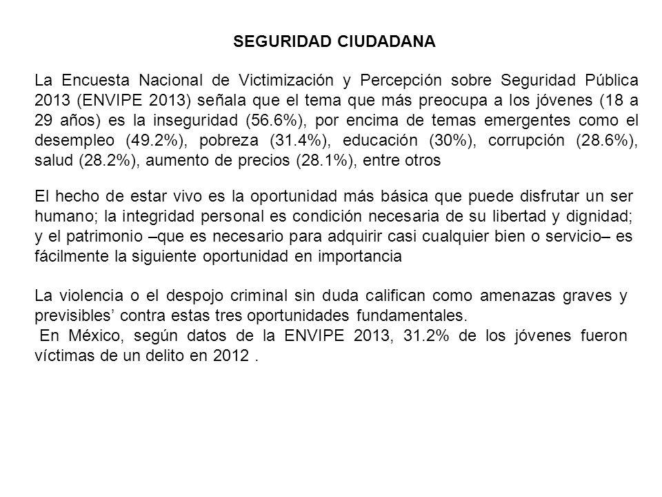SEGURIDAD CIUDADANA La Encuesta Nacional de Victimización y Percepción sobre Seguridad Pública 2013 (ENVIPE 2013) señala que el tema que más preocupa a los jóvenes (18 a 29 años) es la inseguridad (56.6%), por encima de temas emergentes como el desempleo (49.2%), pobreza (31.4%), educación (30%), corrupción (28.6%), salud (28.2%), aumento de precios (28.1%), entre otros El hecho de estar vivo es la oportunidad más básica que puede disfrutar un ser humano; la integridad personal es condición necesaria de su libertad y dignidad; y el patrimonio –que es necesario para adquirir casi cualquier bien o servicio– es fácilmente la siguiente oportunidad en importancia La violencia o el despojo criminal sin duda califican como amenazas graves y previsibles' contra estas tres oportunidades fundamentales.