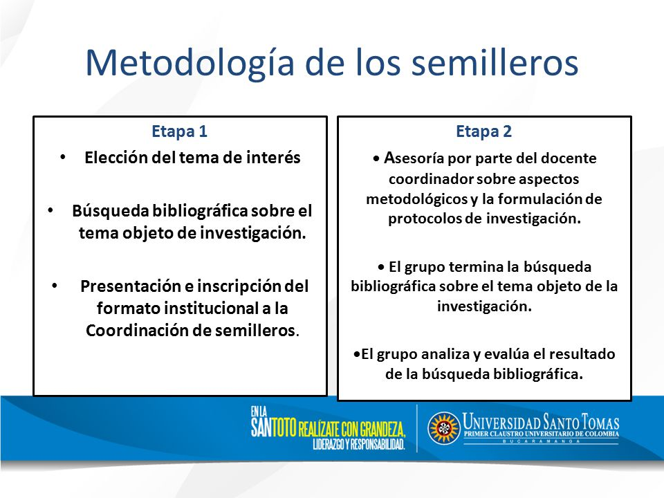 Metodología de los semilleros Etapa 1 Elección del tema de interés Búsqueda bibliográfica sobre el tema objeto de investigación.