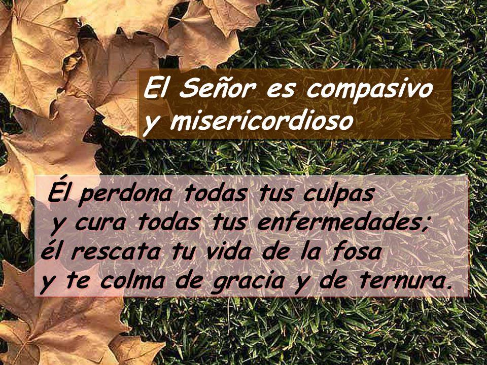 Salmo 102 El Señor es compasivo y misericordioso El Señor es compasivo y misericordioso Bendice, alma mía, al Señor, y todo mi ser a su santo nombre.