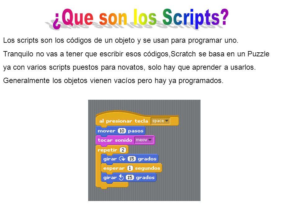 Los scripts son los códigos de un objeto y se usan para programar uno.