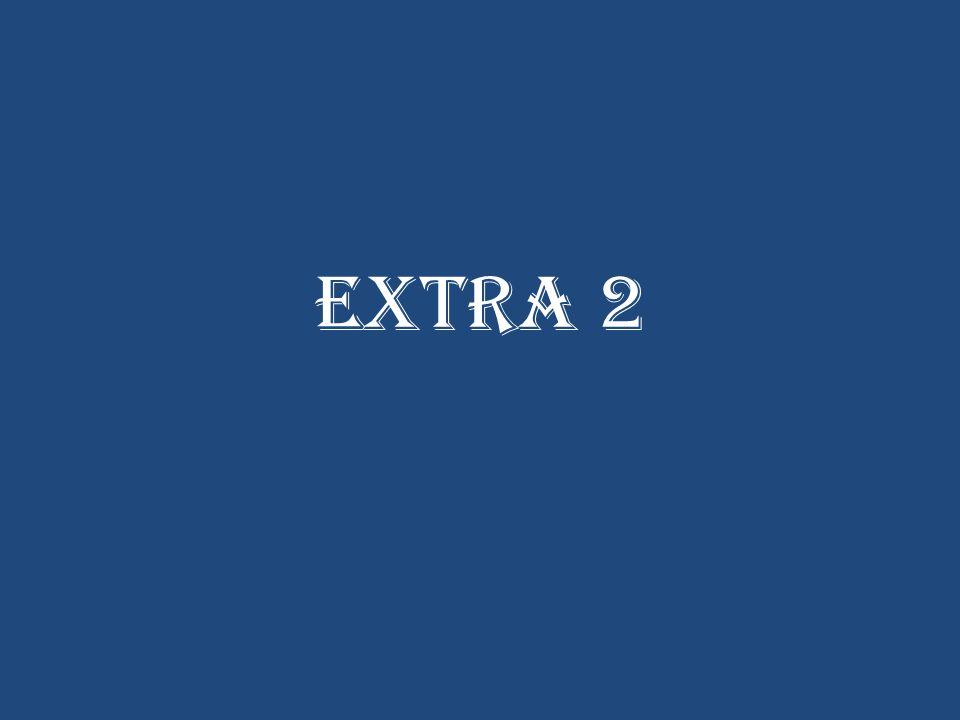 Extra 2