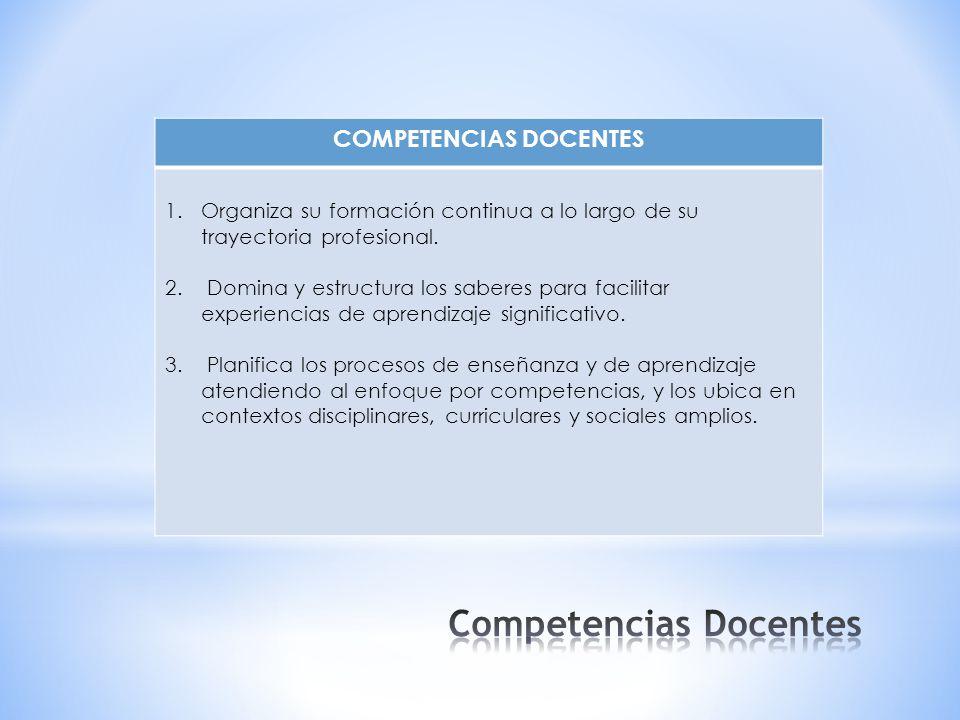 COMPETENCIAS DOCENTES 1.Organiza su formación continua a lo largo de su trayectoria profesional.