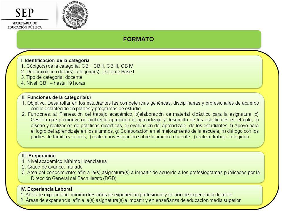 FORMATO I. Identificación de la categoría 1.