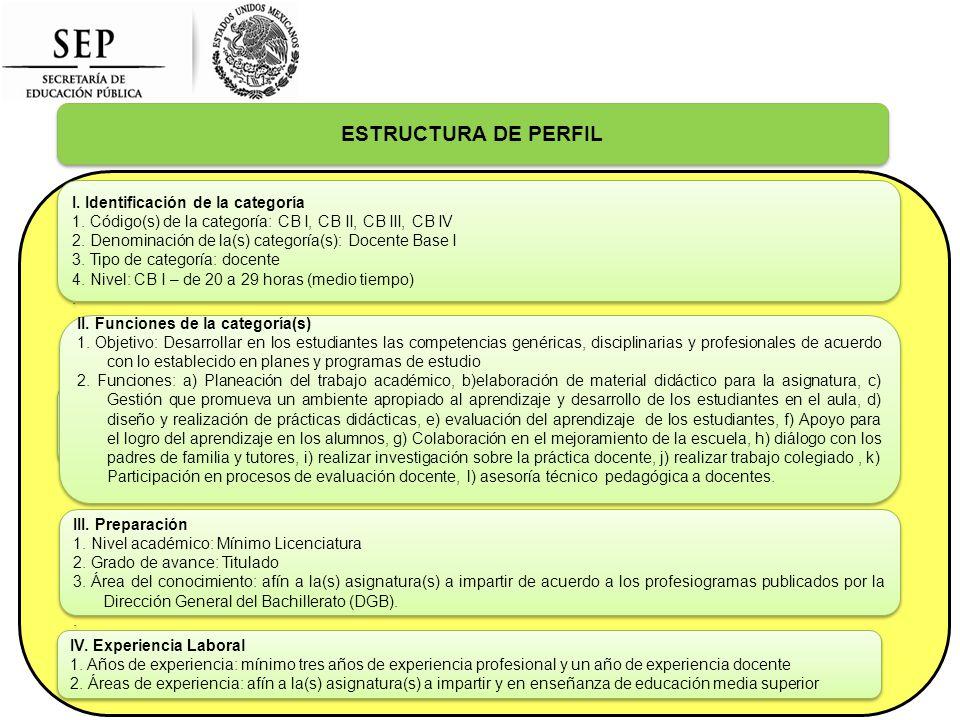 ESTRUCTURA DE PERFIL I. Identificación de la categoría 1.