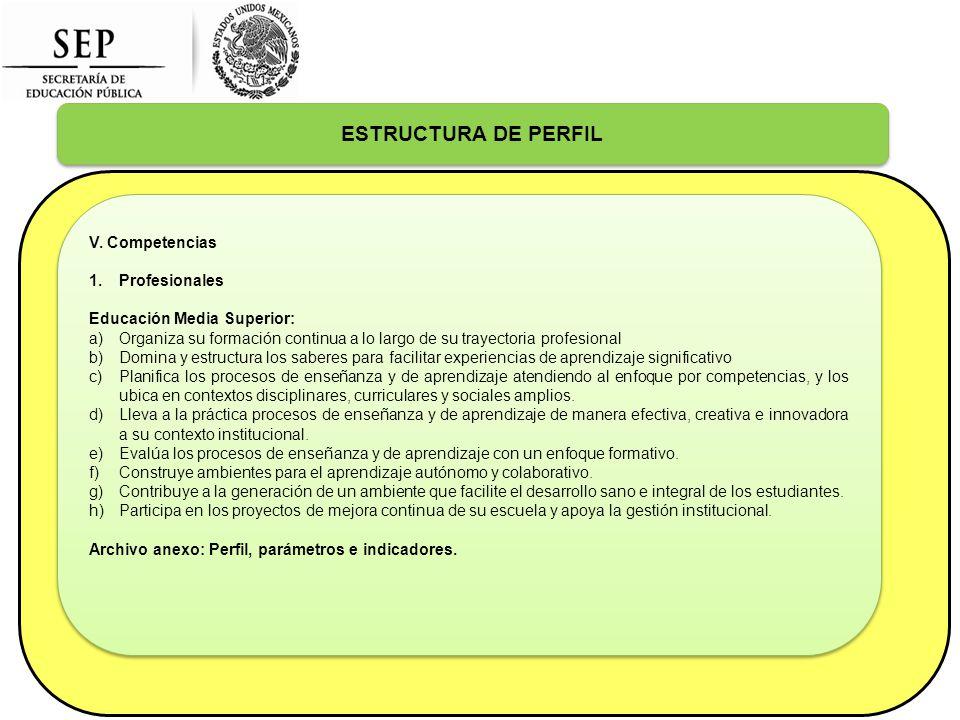 ESTRUCTURA DE PERFIL V.