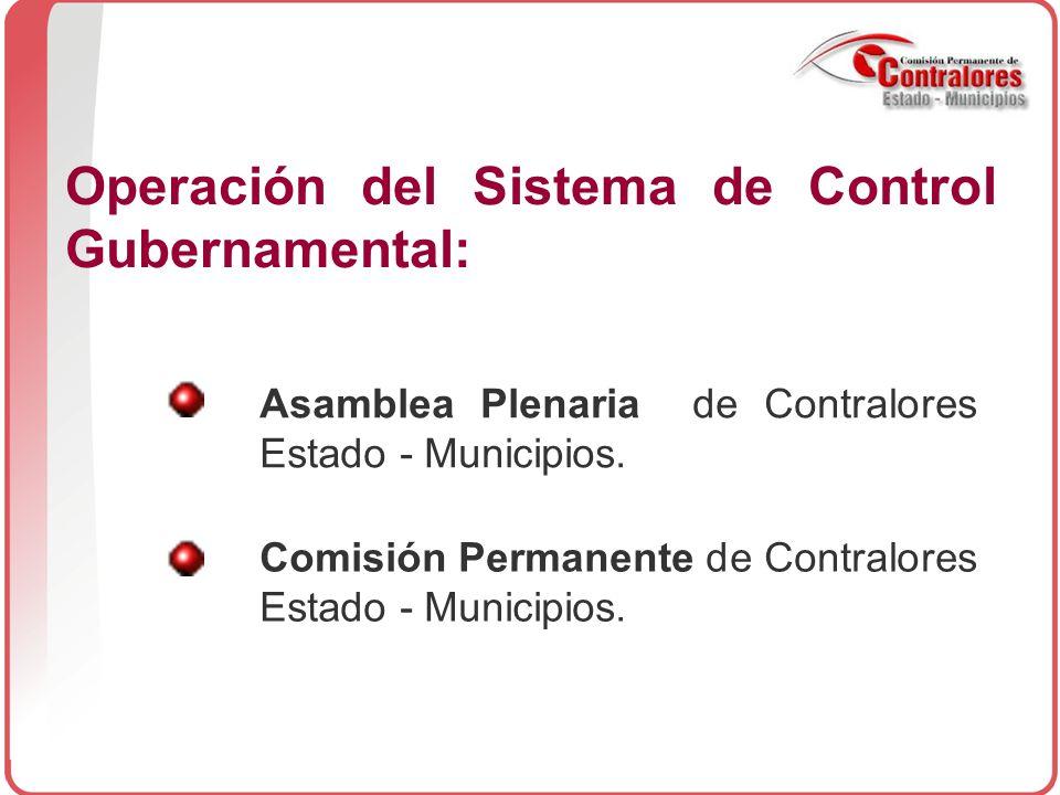Operación del Sistema de Control Gubernamental: Asamblea Plenaria de Contralores Estado - Municipios.
