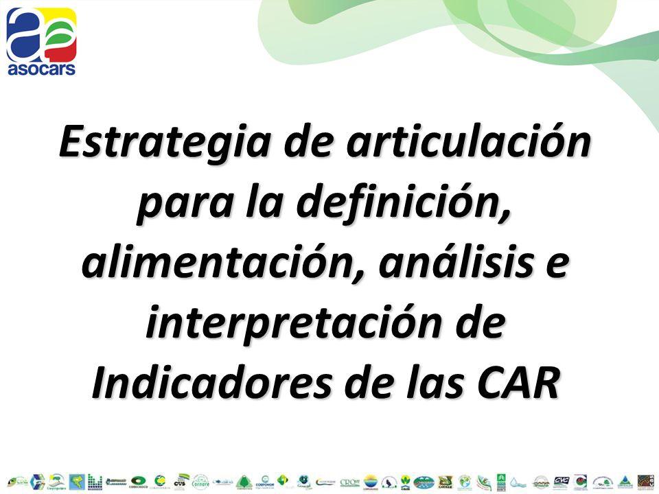 Estrategia de articulación para la definición, alimentación, análisis e interpretación de Indicadores de las CAR