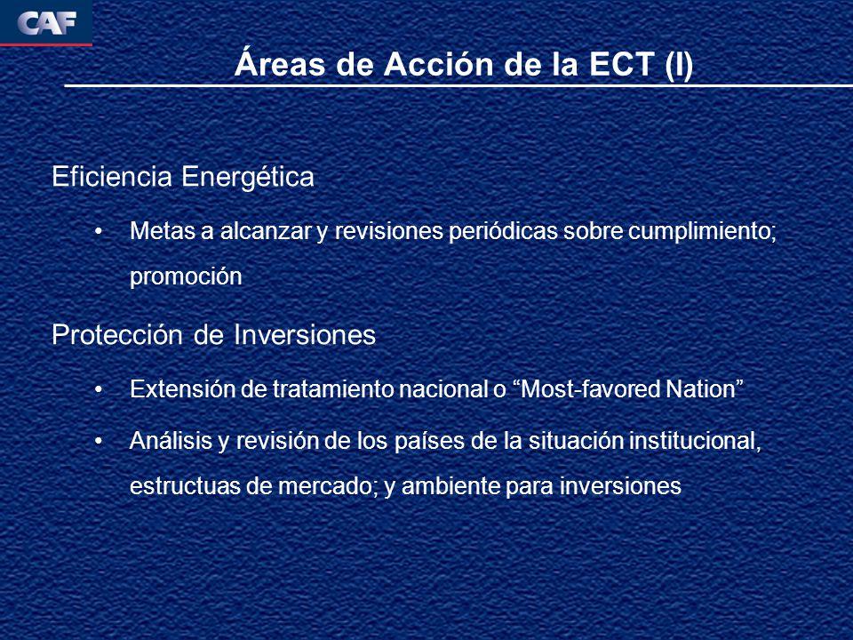 Áreas de Acción de la ECT (I) Eficiencia Energética Metas a alcanzar y revisiones periódicas sobre cumplimiento; promoción Protección de Inversiones Extensión de tratamiento nacional o Most-favored Nation Análisis y revisión de los países de la situación institucional, estructuas de mercado; y ambiente para inversiones