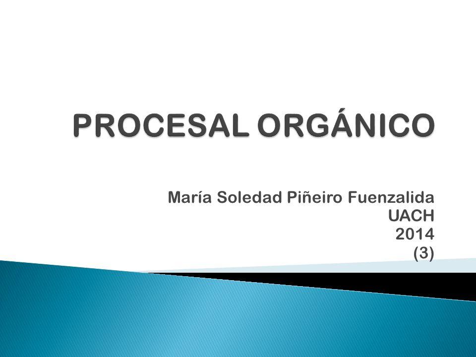 María Soledad Piñeiro Fuenzalida UACH 2014 (3)