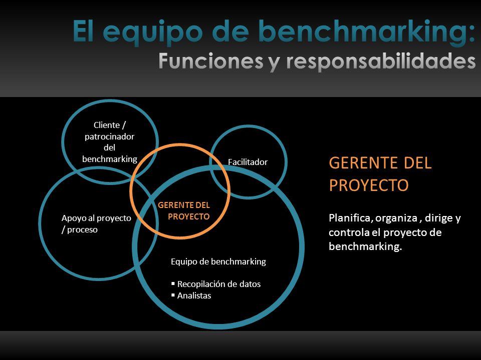 Planifica, organiza, dirige y controla el proyecto de benchmarking.