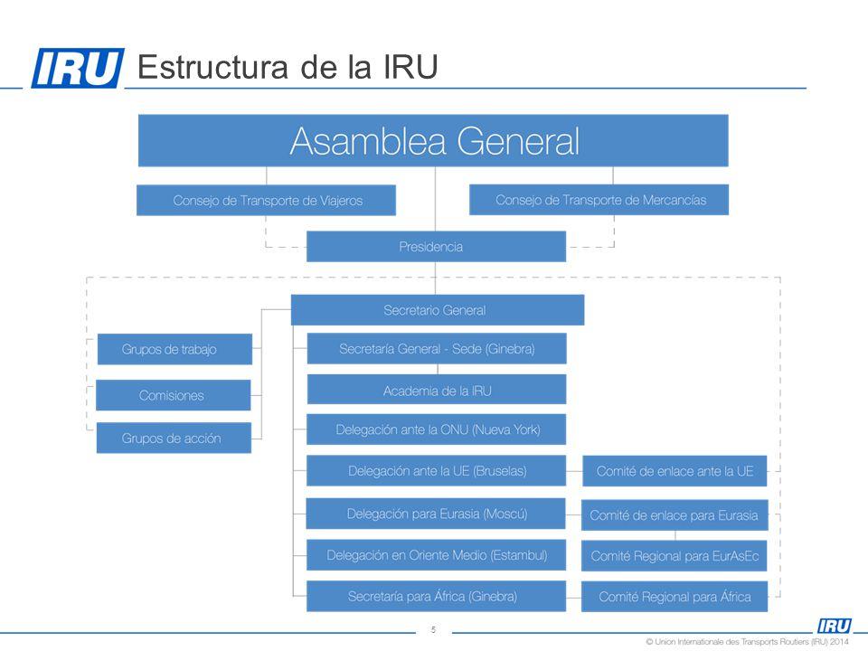 5 Estructura de la IRU
