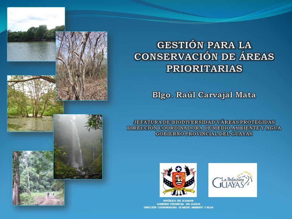 REPÚBLICA DEL ECUADOR GOBIERNO PROVINCIAL DEL GUAYAS DIRECCIÓN COORDINADORA DE MEDIO AMBIENTE Y AGUA