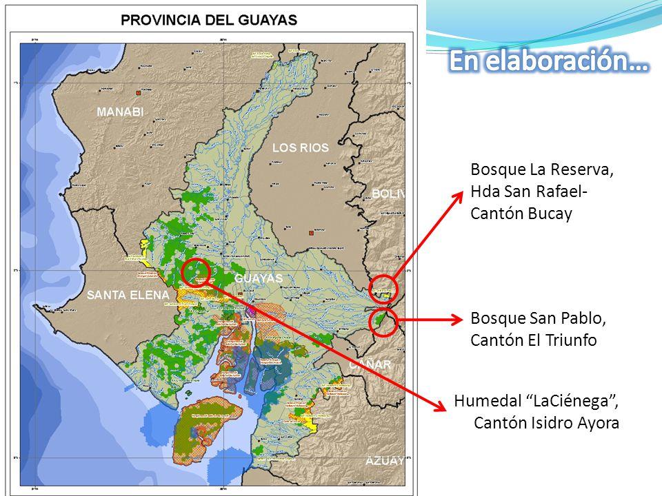 Humedal LaCiénega , Cantón Isidro Ayora Bosque La Reserva, Hda San Rafael- Cantón Bucay Bosque San Pablo, Cantón El Triunfo