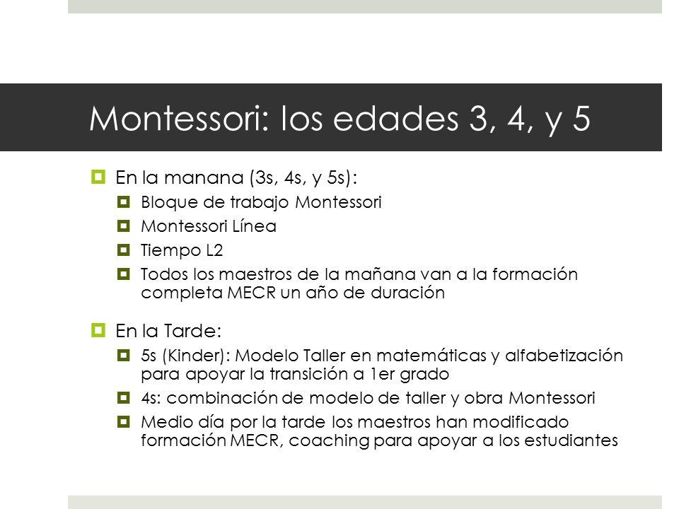 Montessori: los edades 3, 4, y 5  En la manana (3s, 4s, y 5s):  Bloque de trabajo Montessori  Montessori Línea  Tiempo L2  Todos los maestros de la mañana van a la formación completa MECR un año de duración  En la Tarde:  5s (Kinder): Modelo Taller en matemáticas y alfabetización para apoyar la transición a 1er grado  4s: combinación de modelo de taller y obra Montessori  Medio día por la tarde los maestros han modificado formación MECR, coaching para apoyar a los estudiantes