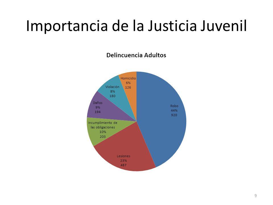 Importancia de la Justicia Juvenil 9