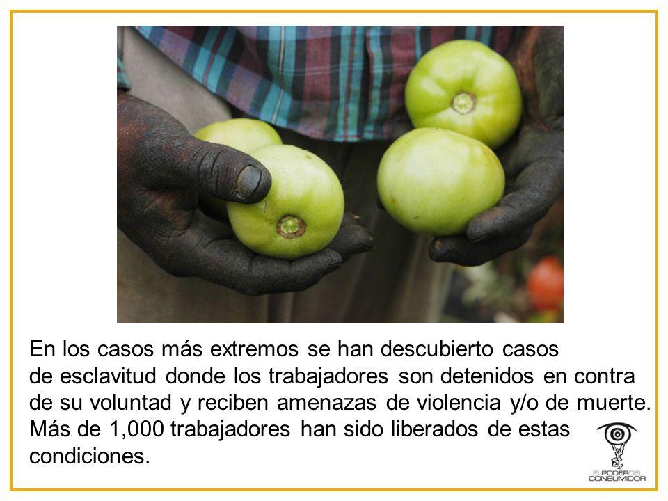 En los casos más extremos se han descubierto casos de esclavitud donde los trabajadores son detenidos en contra de su voluntad y reciben amenazas de violencia y/o de muerte.