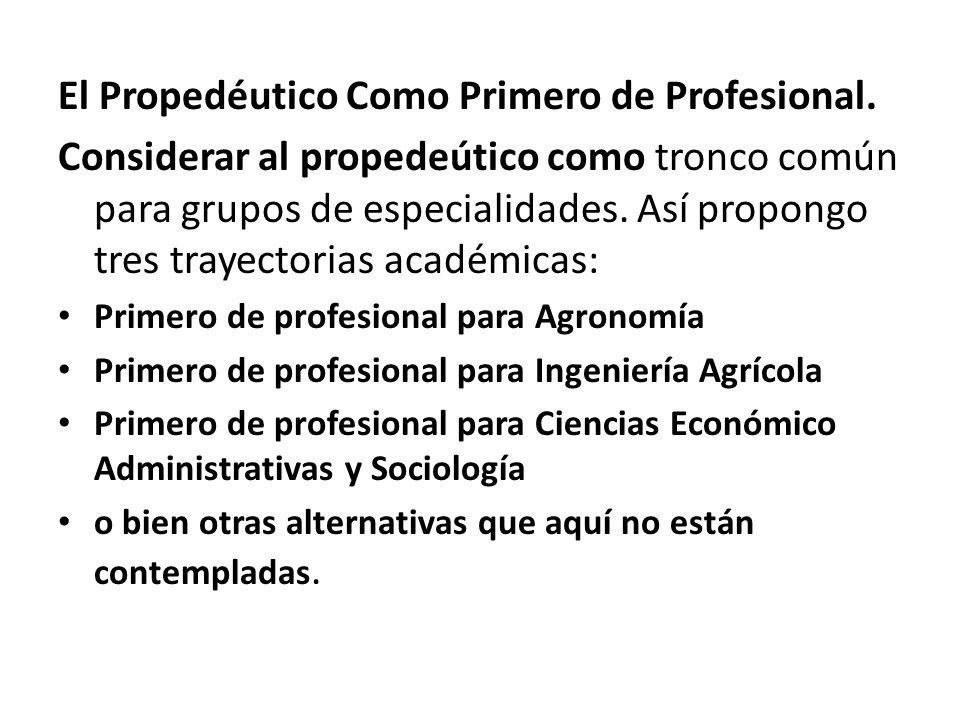 El Propedéutico Como Primero de Profesional.