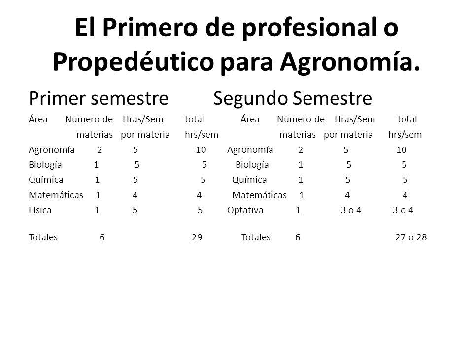 El Primero de profesional o Propedéutico para Agronomía.
