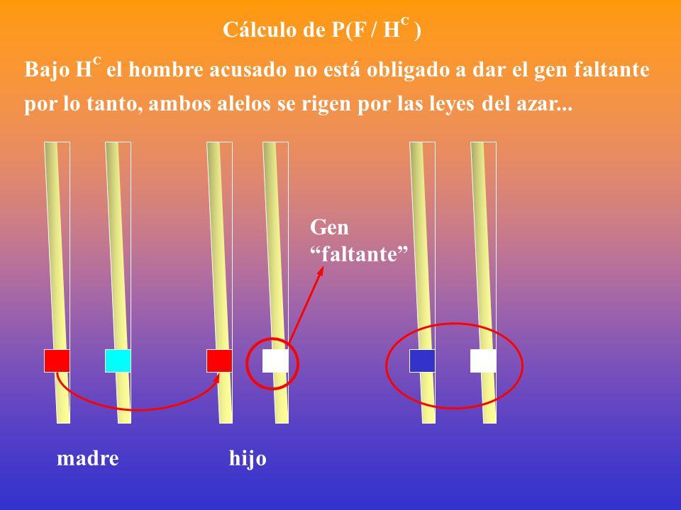 Cálculo de P(F / H C ) Bajo H C el hombre acusado no está obligado a dar el gen faltante por lo tanto, ambos alelos se rigen por las leyes del azar...
