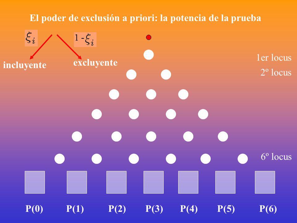 El poder de exclusión a priori: la potencia de la prueba 1er locus incluyente excluyente 2º locus 6º locus P(0)P(1)P(2)P(3)P(4)P(5)P(6)