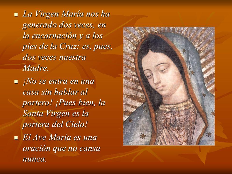 La Virgen María nos ha generado dos veces, en la encarnación y a los pies de la Cruz: es, pues, dos veces nuestra Madre.