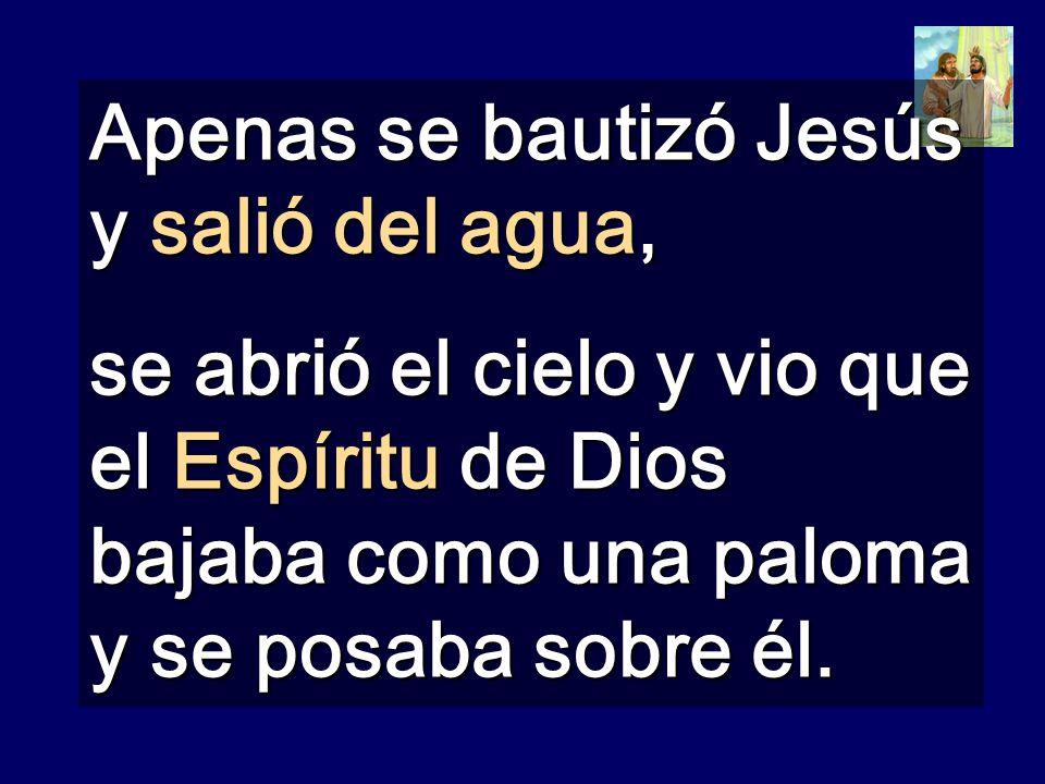 Apenas se bautizó Jesús y salió del agua, se abrió el cielo y vio que el Espíritu de Dios bajaba como una paloma y se posaba sobre él.
