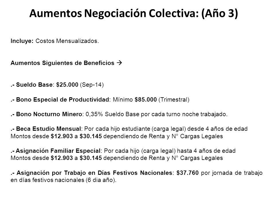 Aumentos Negociación Colectiva: (Año 3) Incluye: Costos Mensualizados.