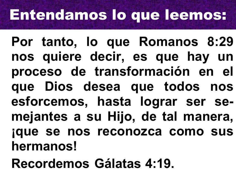 Entendamos lo que leemos: Por tanto, lo que Romanos 8:29 nos quiere decir, es que hay un proceso de transformación en el que Dios desea que todos nos esforcemos, hasta lograr ser se- mejantes a su Hijo, de tal manera, ¡que se nos reconozca como sus hermanos.