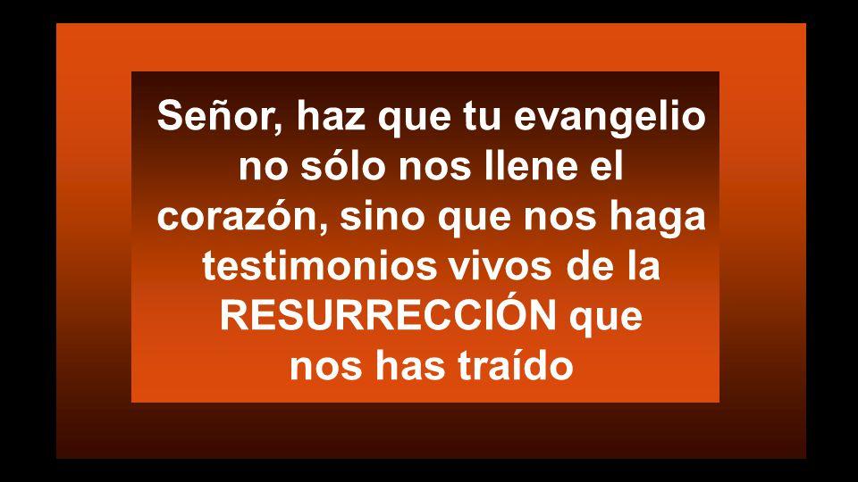 ¿Colaboramos en la tarea de Resurrección.