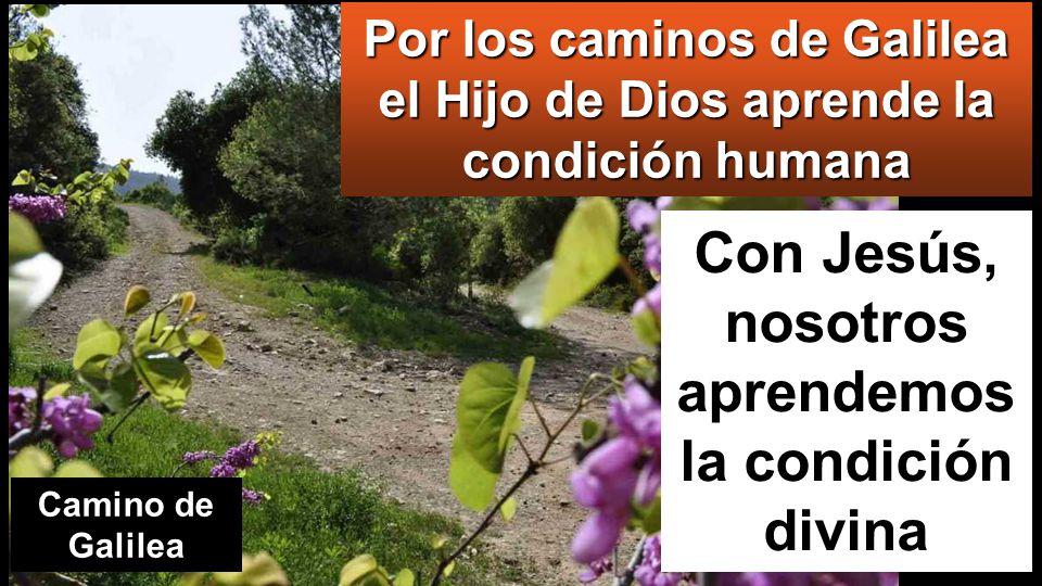 Lc 7,11-17: En aquel tiempo, iba Jesús camino de una ciudad llamada Naín, e iban con él sus discípulos y mucho gentío.
