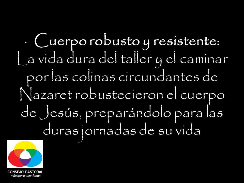 CONSEJO PASTORAL más que compañeros · Cuerpo robusto y resistente: La vida dura del taller y el caminar por las colinas circundantes de Nazaret robustecieron el cuerpo de Jesús, preparándolo para las duras jornadas de su vida
