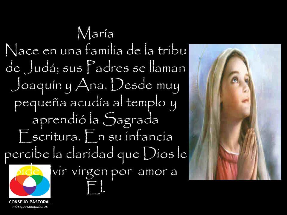 CONSEJO PASTORAL más que compañeros María Nace en una familia de la tribu de Judá; sus Padres se llaman Joaquín y Ana.