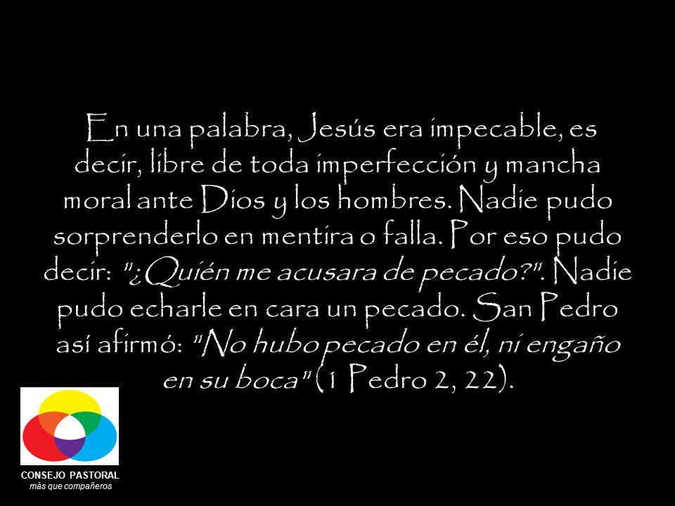 CONSEJO PASTORAL más que compañeros En una palabra, Jesús era impecable, es decir, libre de toda imperfección y mancha moral ante Dios y los hombres.