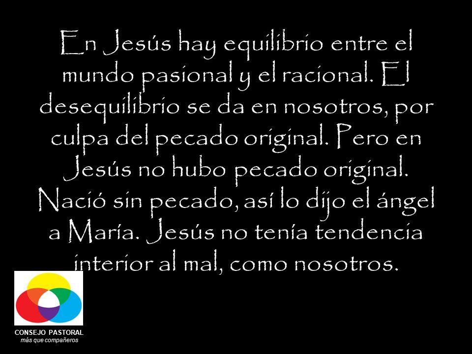 CONSEJO PASTORAL más que compañeros En Jesús hay equilibrio entre el mundo pasional y el racional.