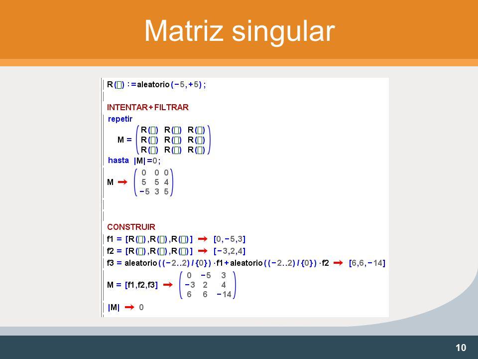 10 Matriz singular