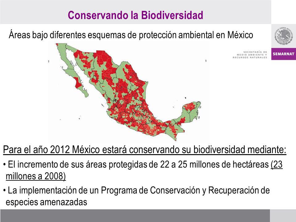 Conservando la Biodiversidad Áreas bajo diferentes esquemas de protección ambiental en México Para el año 2012 México estará conservando su biodiversidad mediante: El incremento de sus áreas protegidas de 22 a 25 millones de hectáreas (23 millones a 2008) La implementación de un Programa de Conservación y Recuperación de especies amenazadas