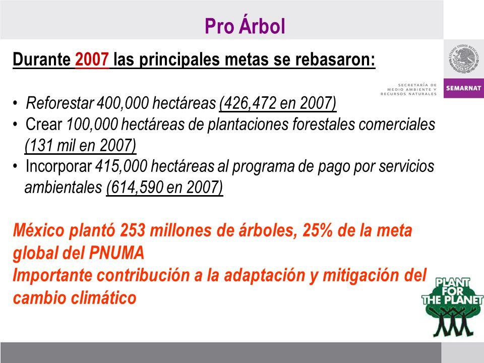 Durante 2007 las principales metas se rebasaron: Reforestar 400,000 hectáreas (426,472 en 2007) Crear 100,000 hectáreas de plantaciones forestales comerciales (131 mil en 2007) Incorporar 415,000 hectáreas al programa de pago por servicios ambientales (614,590 en 2007) México plantó 253 millones de árboles, 25% de la meta global del PNUMA Importante contribución a la adaptación y mitigación del cambio climático Pro Árbol