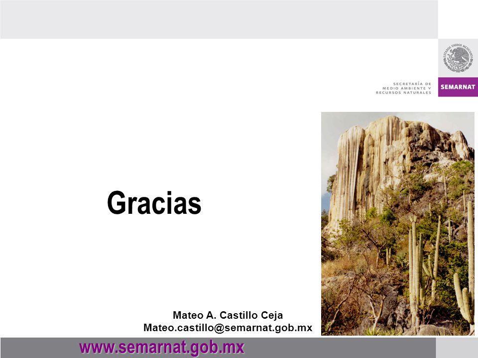Gracias www.semarnat.gob.mx Mateo A. Castillo Ceja Mateo.castillo@semarnat.gob.mx